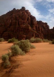 Sand Dunes at Snow Canyon State Park